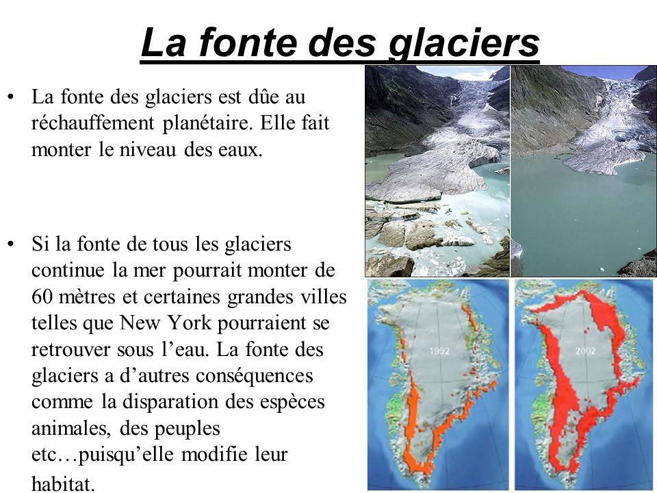 La fonte des glaciers La fonte des glaciers est dûe au réchauffement planétaire. Elle fait monter le niveau des eaux. Si la fonte de tous les glaciers