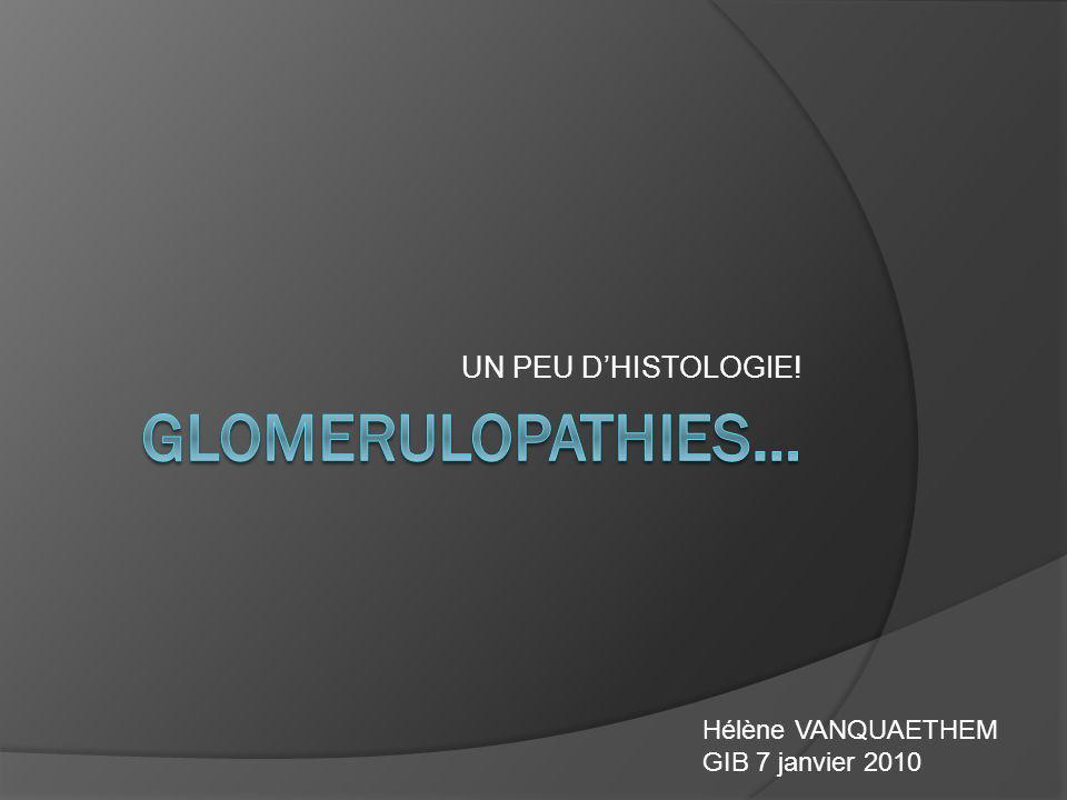 GNRP TYPE II GRANULEUX DEPOTS GRANULEUX Ac IgA: PR, BERGER IgG/M/A, C1q: LUPUS IgG/M,C3: CRYOGLOB