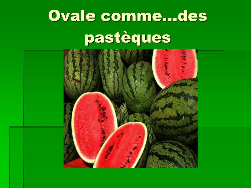 Ovale comme…des pastèques