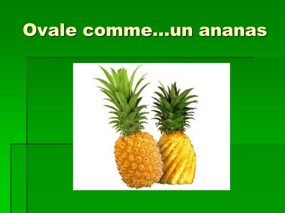 Ovale comme…un ananas