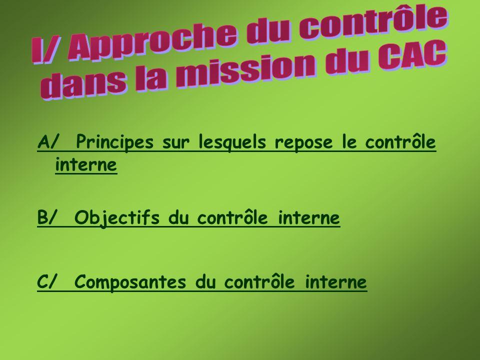 Le contrôle interne sadapte aux spécificités de chaque entreprise.