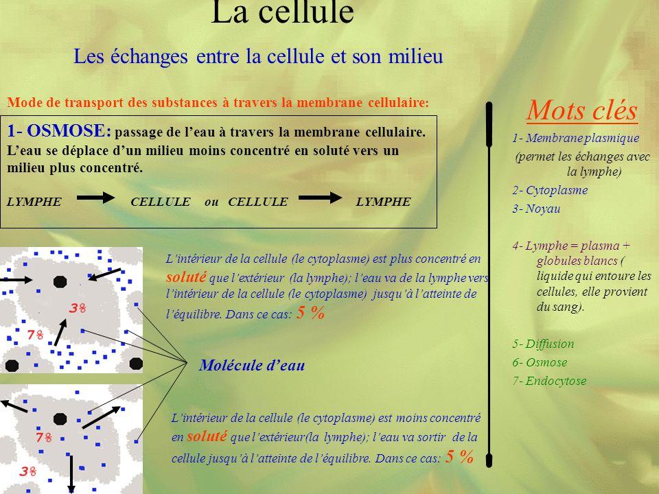 Mode de transport des substances à travers la membrane cellulaire : Mots clés 1- Membrane plasmique (permet les échanges avec la lymphe) 2- Cytoplasme