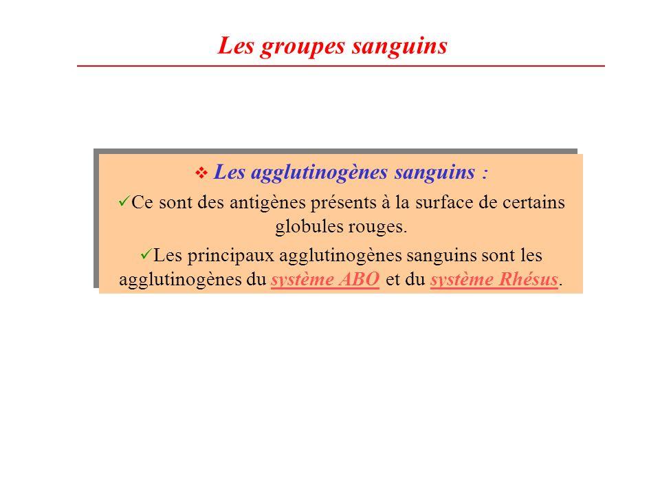 Les groupes sanguins Les agglutinogènes sanguins : Ce sont des antigènes présents à la surface de certains globules rouges. Les principaux agglutinogè