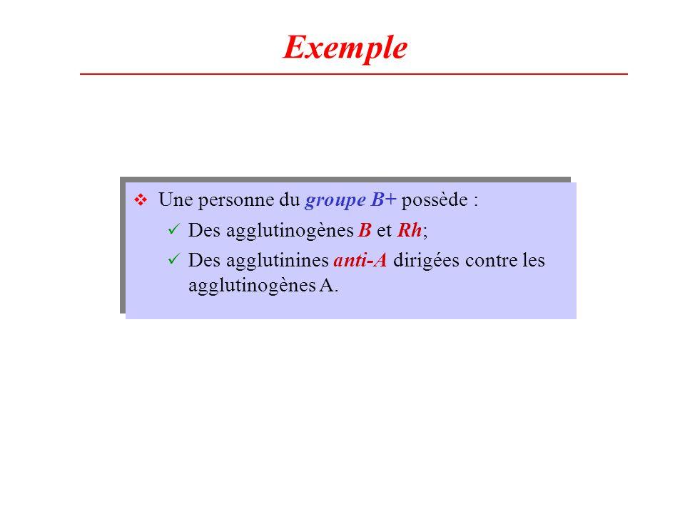Exemple Une personne du groupe B+ possède : Des agglutinogènes B et Rh; Des agglutinines anti-A dirigées contre les agglutinogènes A. Une personne du