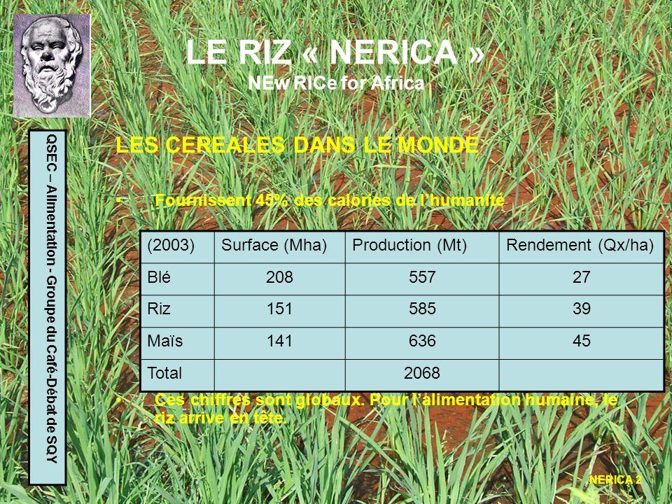 LE RIZ « NERICA » NEw RICe for Africa QSEC – Alimentation - Groupe du Café-Débat de SQY LE RIZ DANS LE MONDE Genre : ORYZA (comprend 20 espèces environ) Deux espèces principales sont cultivées : - Oryza sativa (riz asiatique) - Oryza glaberrina (riz africain) Plusieurs milliers de variétés pour chaque espèce Les rendements varient de 25 à 95 qx/ha selon les régions Pas dautomatisation de la récolte Trois sortes de riziculture : - Inondée - Irriguée - Pluviale (ou sèche) La Chine (167 Mt) et lInde (134 Mt) sont les principaux producteurs
