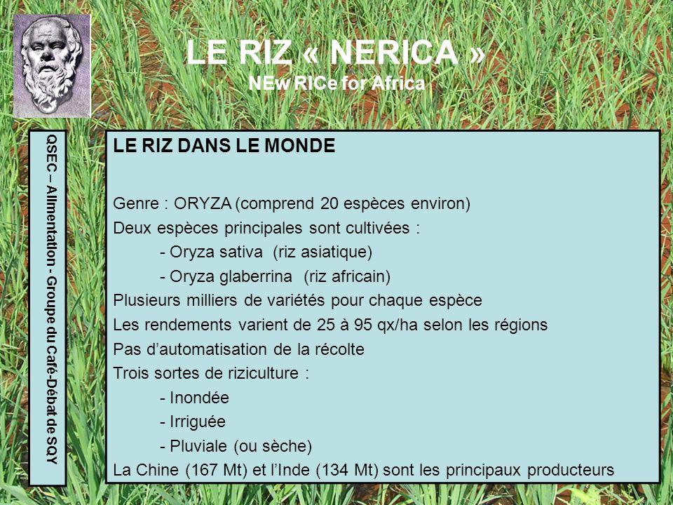 LE RIZ « NERICA » NEw RICe for Africa QSEC – Alimentation - Groupe du Café-Débat de SQY LE RIZ EN AFRIQUE 20 millions de petits producteurs La demande augmente de 6% par an (urbanisation) Le riz représente 25% des importations (en valeur) de lAfrique de lOuest et du Centre : 4 Millions de tonnes 2 milliards de $ Les cultures « sèches » occupent : 40% des surfaces cultivées (rizières) 70% des producteurs Depuis 450 ans, le riz asiatique supplante peu à peu le riz africain, présent depuis 3500 ans.