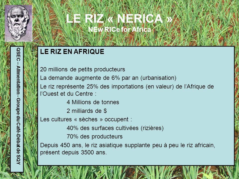 LE RIZ « NERICA » NEw RICe for Africa QSEC – Alimentation - Groupe du Café-Débat de SQY HISTOIRE DU PROJET 1971 : création de lADRAO : Association pour le Développement de la Riziculture en Afrique de lOuest 1992 : lancement du projet de recherche par Monty JONES 1994 : premiers résultats positifs Développement de plusieurs milliers de variétés Nerica 1998 : premiers essais en milieu naturel 2002 : lancement du plan de diffusion de la technique par lARI (Initiative africaine pour le riz).