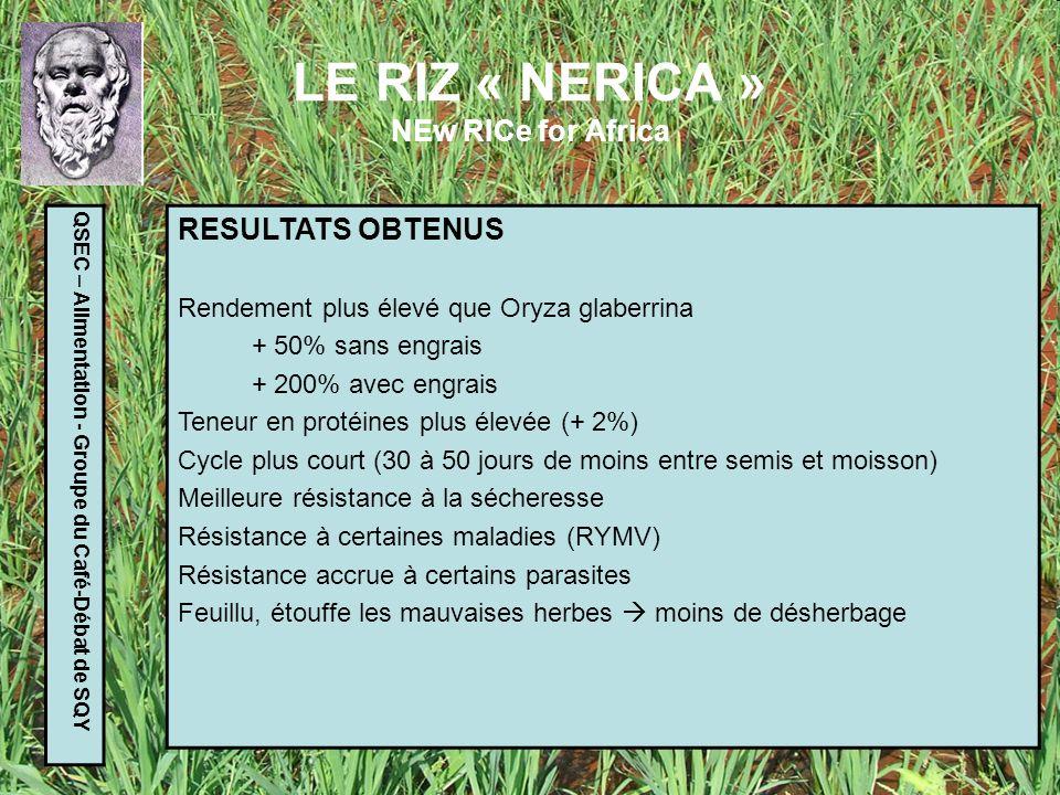 LE RIZ « NERICA » NEw RICe for Africa QSEC – Alimentation - Groupe du Café-Débat de SQY DIFFUSION DES RESULTATS Phase pilote (avant 2002) en Guinée et Côte dIvoire Phase 1 (5 ans) 2002-2007 ARI a permis de mettre en culture 200 000 ha de NERICA et de produire 750 000 tonnes, soit 90 M$ dimportations en moins pour 10 pays dAfrique sub-saharienne Phase 2 : depuis 2008 Création du CARD (Coalition pour le dév du riz en Afrique) Contractualisation avec des agriculteurs pour la production de semences certifiées, distribution de semences et dengrais, élargissement à dautres pays,…