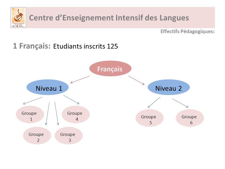Centre dEnseignement Intensif des Langues 1 Français: Etudiants inscrits 125 Français Effectifs Pédagogiques: Niveau 1Niveau 2 Groupe 1 Groupe 2 Groupe 3 Groupe 4 Groupe 5 Groupe 6