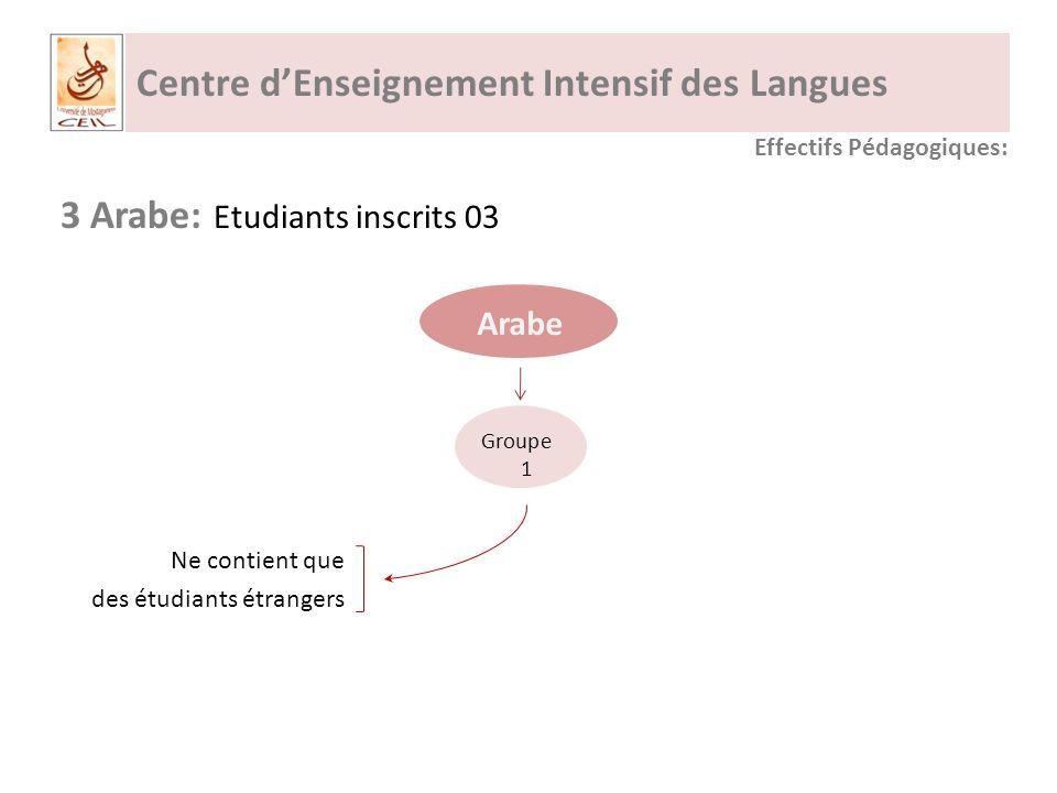 Centre dEnseignement Intensif des Langues 3 Arabe: Etudiants inscrits 03 Arabe Effectifs Pédagogiques: Groupe 1 Ne contient que des étudiants étrangers