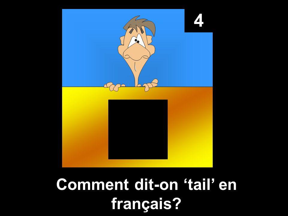 4 Comment dit-on tail en français?