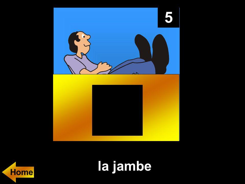 5 la jambe Home