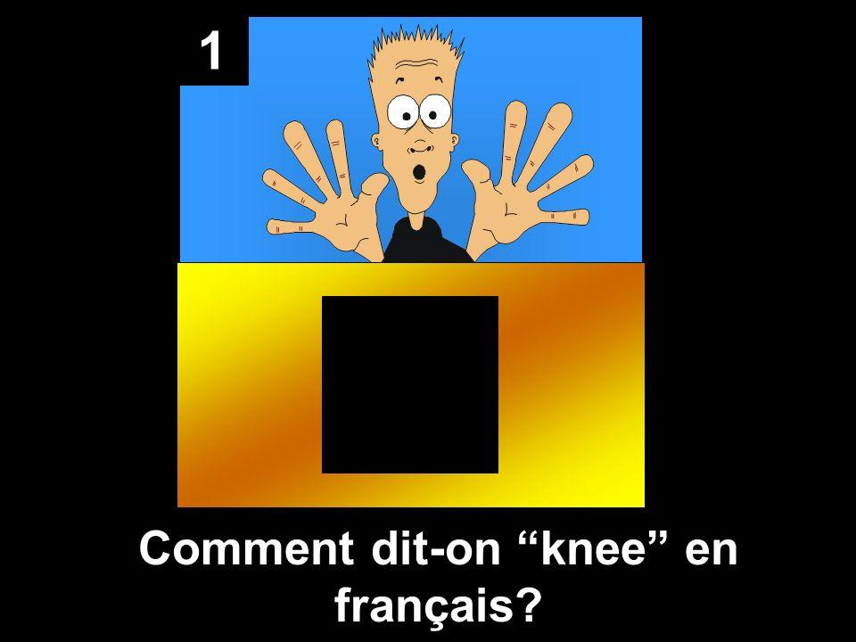 1 Comment dit-on knee en français?