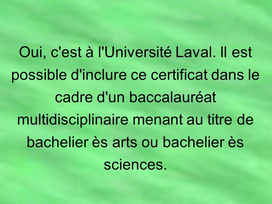 Oui, c'est à l'Université Laval. Il est possible d'inclure ce certificat dans le cadre d'un baccalauréat multidisciplinaire menant au titre de bacheli