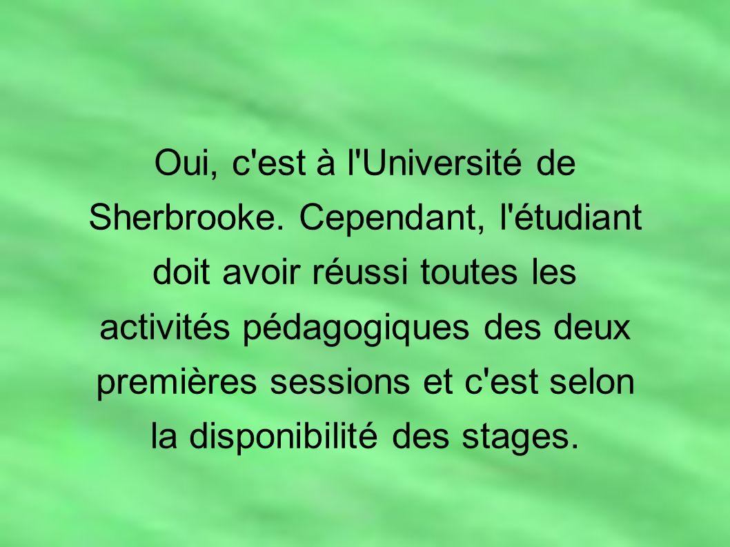 Oui, c'est à l'Université de Sherbrooke. Cependant, l'étudiant doit avoir réussi toutes les activités pédagogiques des deux premières sessions et c'es