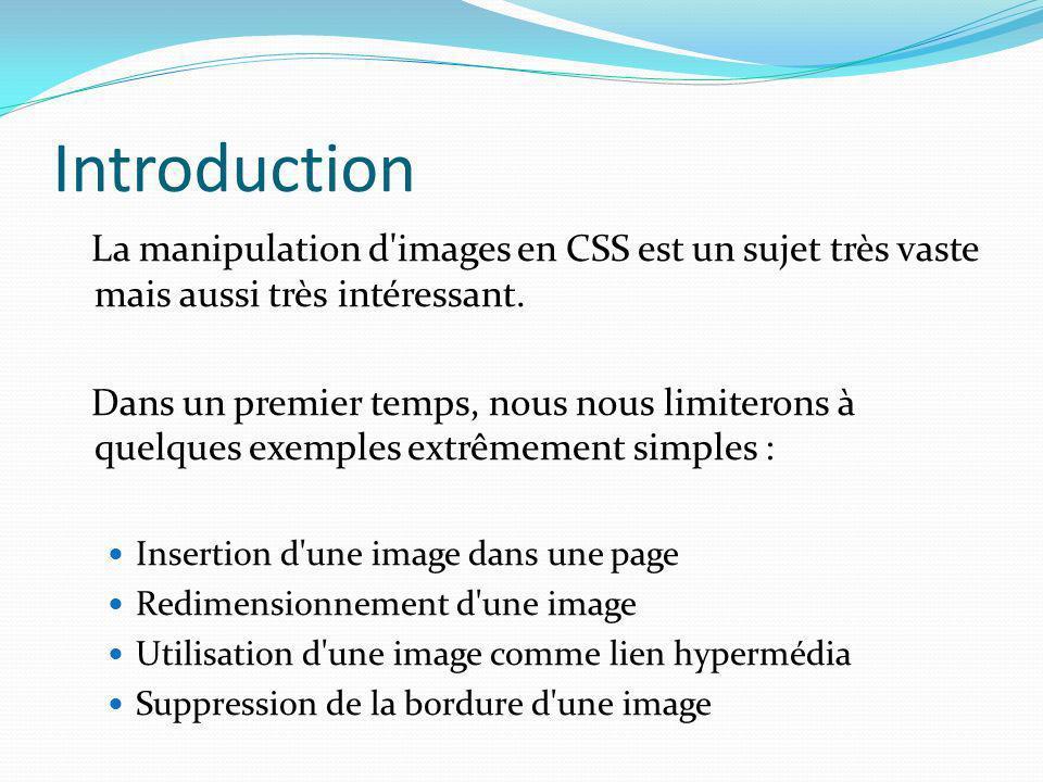 Introduction La manipulation d'images en CSS est un sujet très vaste mais aussi très intéressant. Dans un premier temps, nous nous limiterons à quelqu