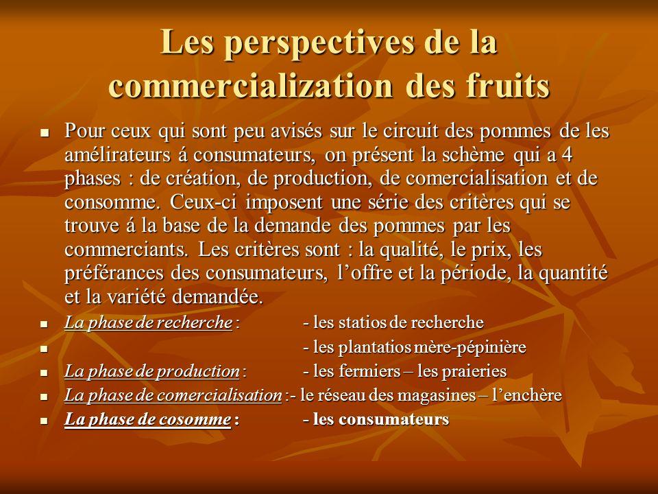 Les perspectives de la commercialization des fruits Pour ceux qui sont peu avisés sur le circuit des pommes de les amélirateurs á consumateurs, on présent la schème qui a 4 phases : de création, de production, de comercialisation et de consomme.