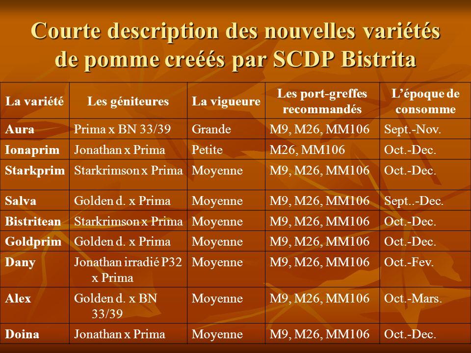 Courte description des nouvelles variétés de pomme creéés par SCDP Bistrita La variétéLes géniteuresLa vigueure Les port-greffes recommandés Lépoque de consomme AuraPrima x BN 33/39GrandeM9, M26, MM106Sept.-Nov.