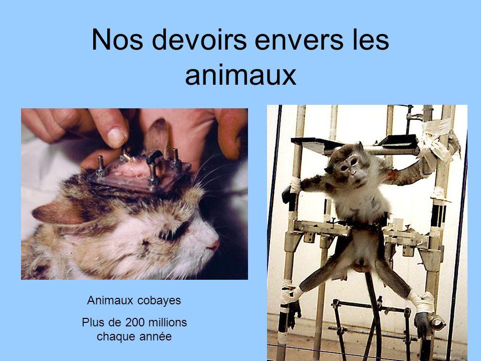 Nos devoirs envers les animaux Animaux cobayes Plus de 200 millions chaque année