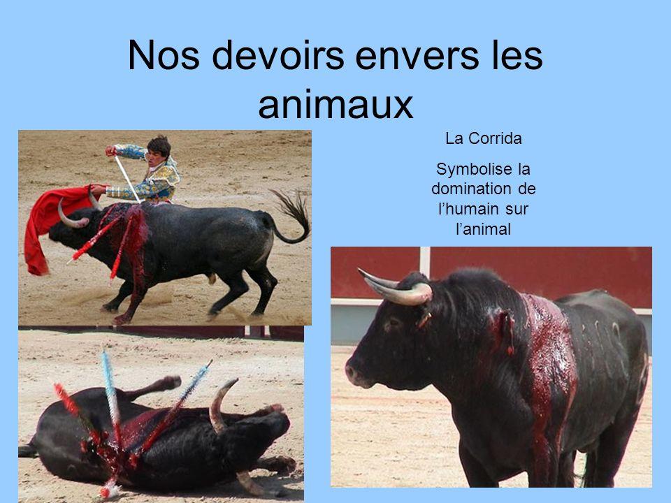 Nos devoirs envers les animaux La Corrida Symbolise la domination de lhumain sur lanimal