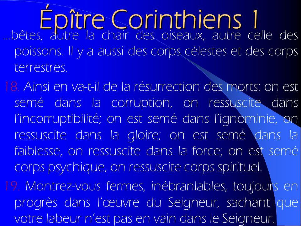 Épître Corinthiens 1 …bêtes, autre la chair des oiseaux, autre celle des poissons. Il y a aussi des corps célestes et des corps terrestres. 18. Ainsi