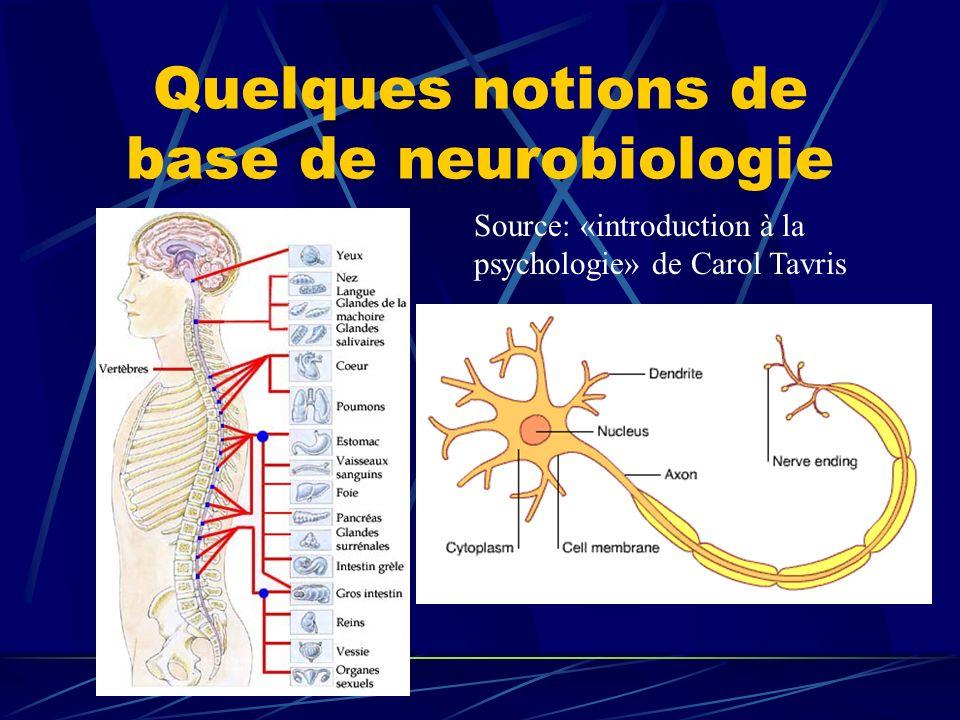 Quelques notions de base de neurobiologie Source: «introduction à la psychologie» de Carol Tavris