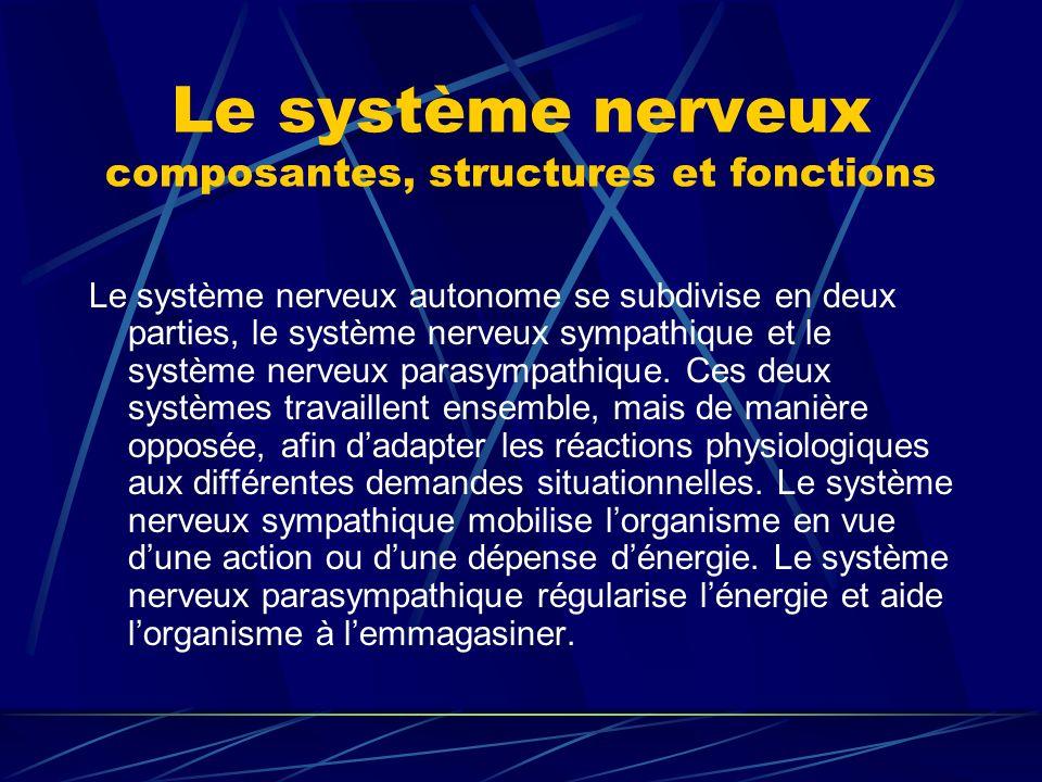 Le système nerveux composantes, structures et fonctions Le système nerveux autonome se subdivise en deux parties, le système nerveux sympathique et le