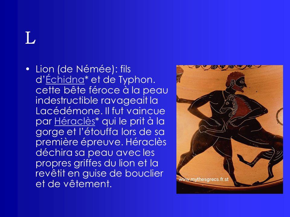 L Lion (de Némée): fils dÉchidna* et de Typhon. cette bête féroce à la peau indestructible ravageait la Lacédémone. Il fut vaincue par Héraclès* qui l