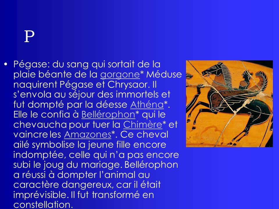 P Pégase: du sang qui sortait de la plaie béante de la gorgone* Méduse naquirent Pégase et Chrysaor. Il senvola au séjour des immortels et fut dompté