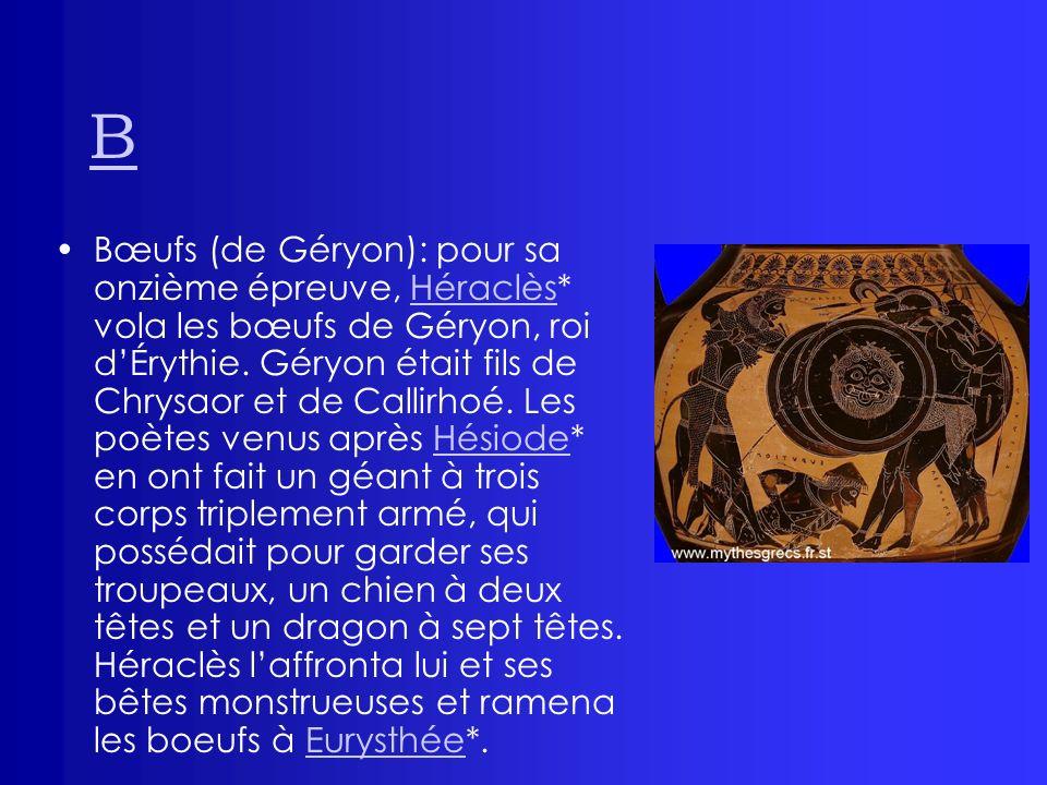 B Bœufs (de Géryon): pour sa onzième épreuve, Héraclès* vola les bœufs de Géryon, roi dÉrythie. Géryon était fils de Chrysaor et de Callirhoé. Les poè