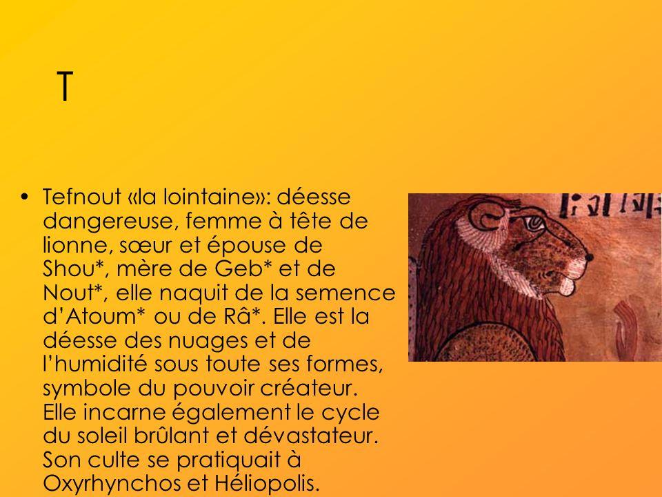 T Tefnout «la lointaine»: déesse dangereuse, femme à tête de lionne, sœur et épouse de Shou*, mère de Geb* et de Nout*, elle naquit de la semence dAtoum* ou de Râ*.