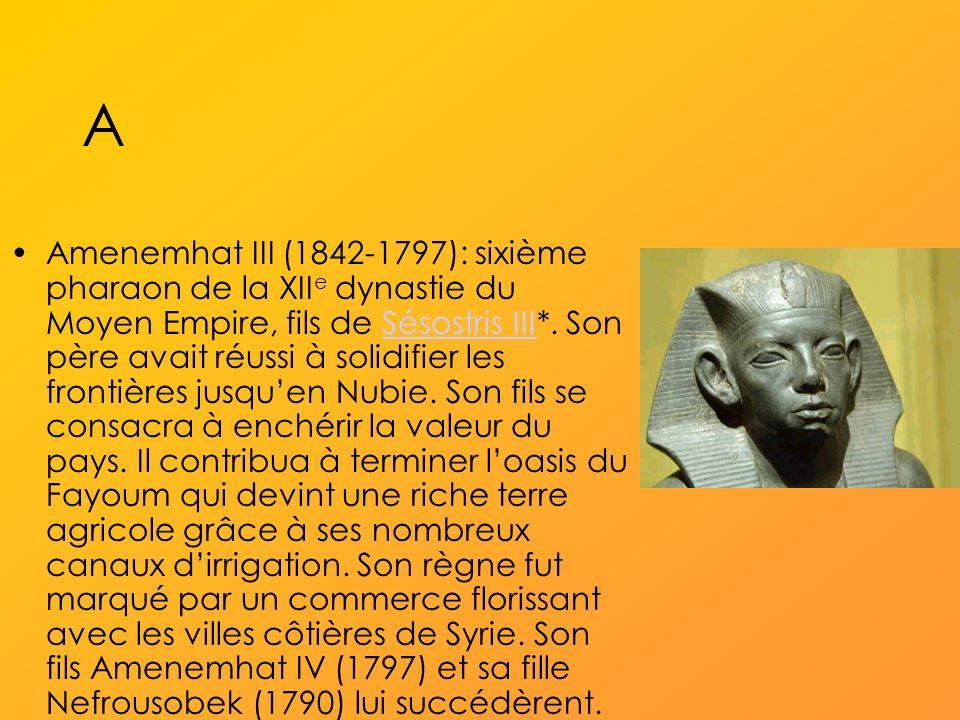 A Amenemhat III (1842-1797): sixième pharaon de la XII e dynastie du Moyen Empire, fils de Sésostris III*.