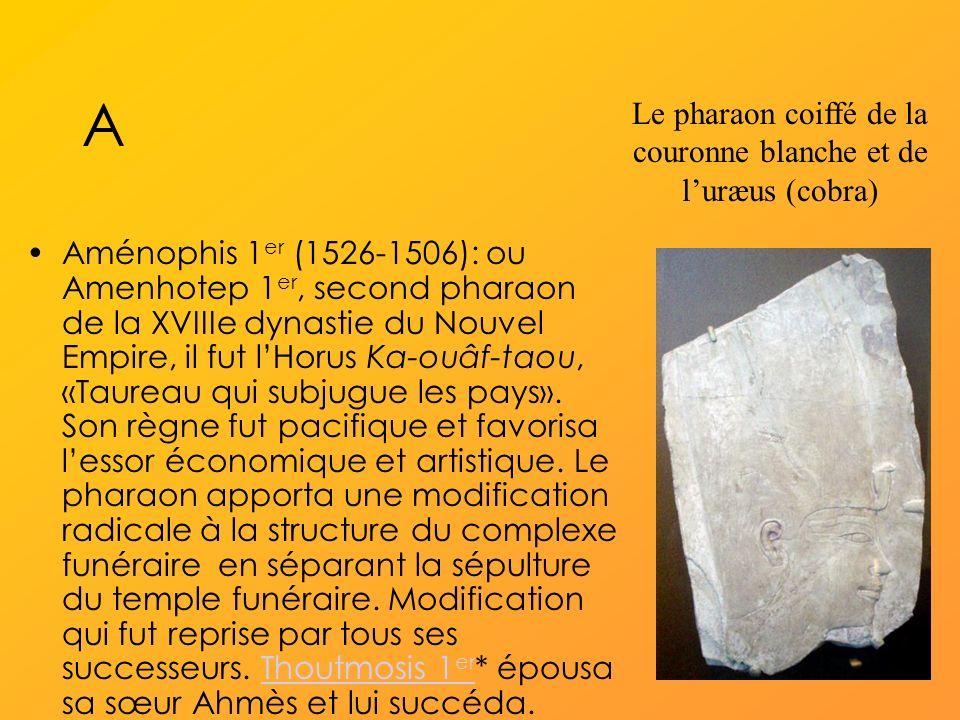 A Aménophis 1 er (1526-1506): ou Amenhotep 1 er, second pharaon de la XVIIIe dynastie du Nouvel Empire, il fut lHorus Ka-ouâf-taou, «Taureau qui subjugue les pays».