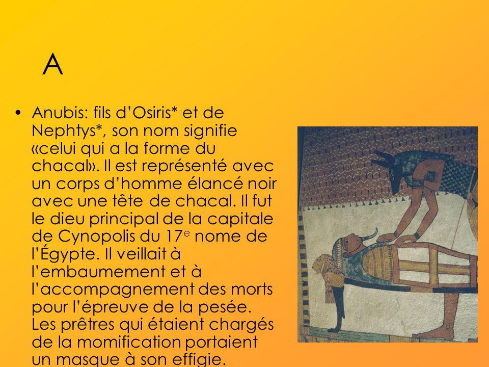 A Anubis: fils dOsiris* et de Nephtys*, son nom signifie «celui qui a la forme du chacal».