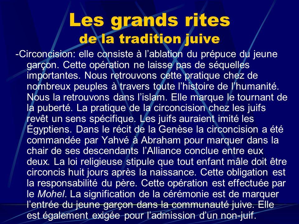 Les grands rites de la tradition juive -Circoncision: elle consiste à lablation du prépuce du jeune garçon. Cette opération ne laisse pas de séquelles