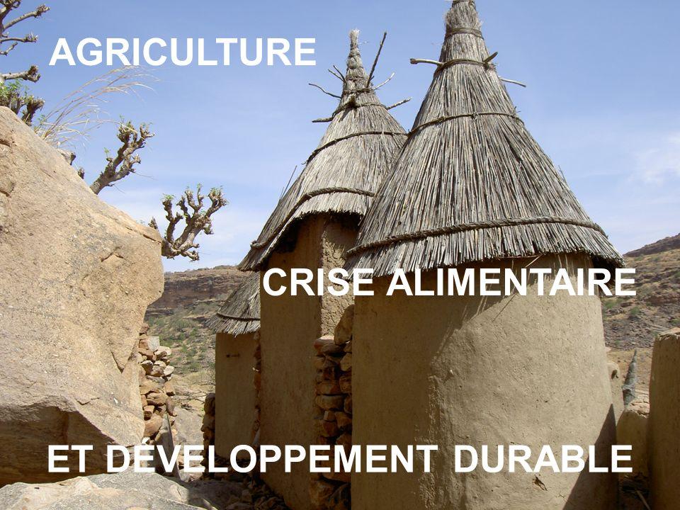 AGRICULTURE CRISE ALIMENTAIRE ET DÉVELOPPEMENT DURABLE