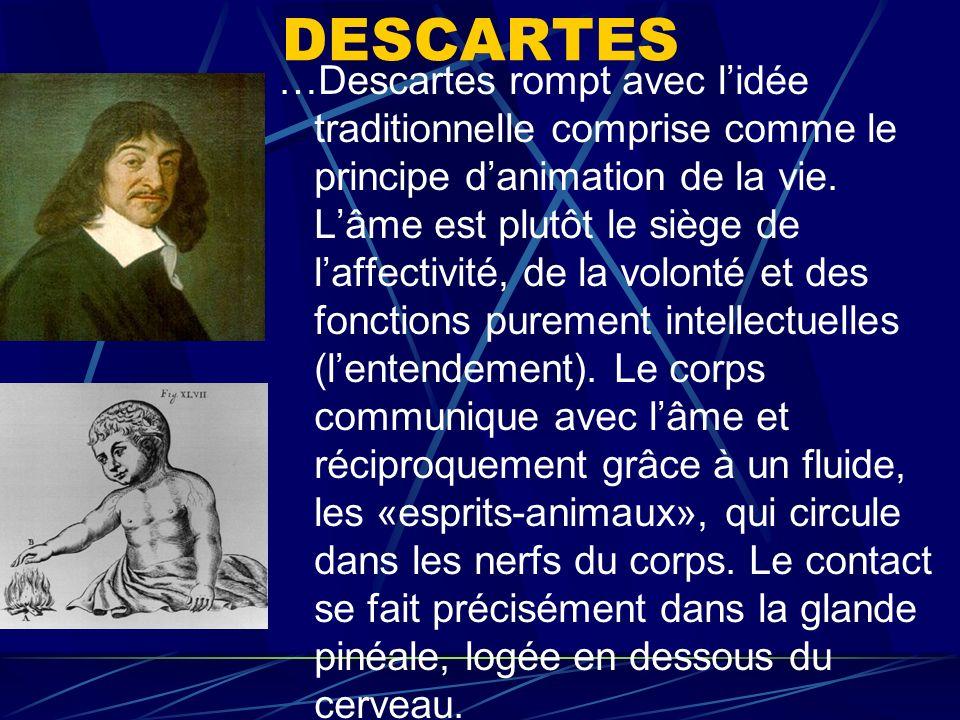 DESCARTES …Descartes rompt avec lidée traditionnelle comprise comme le principe danimation de la vie. Lâme est plutôt le siège de laffectivité, de la