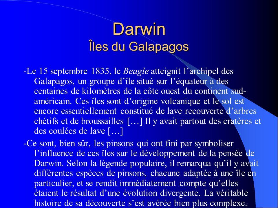 Darwin Îles du Galapagos -Le 15 septembre 1835, le Beagle atteignit larchipel des Galapagos, un groupe dîle situé sur léquateur à des centaines de kil