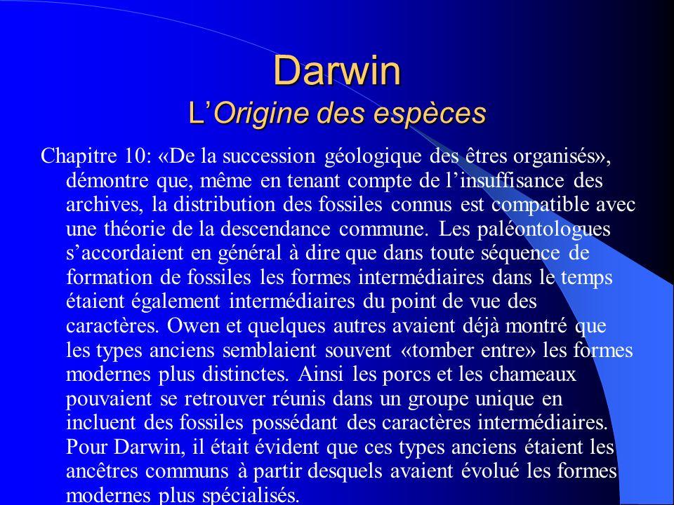 Darwin LOrigine des espèces Chapitre 10: «De la succession géologique des êtres organisés», démontre que, même en tenant compte de linsuffisance des a