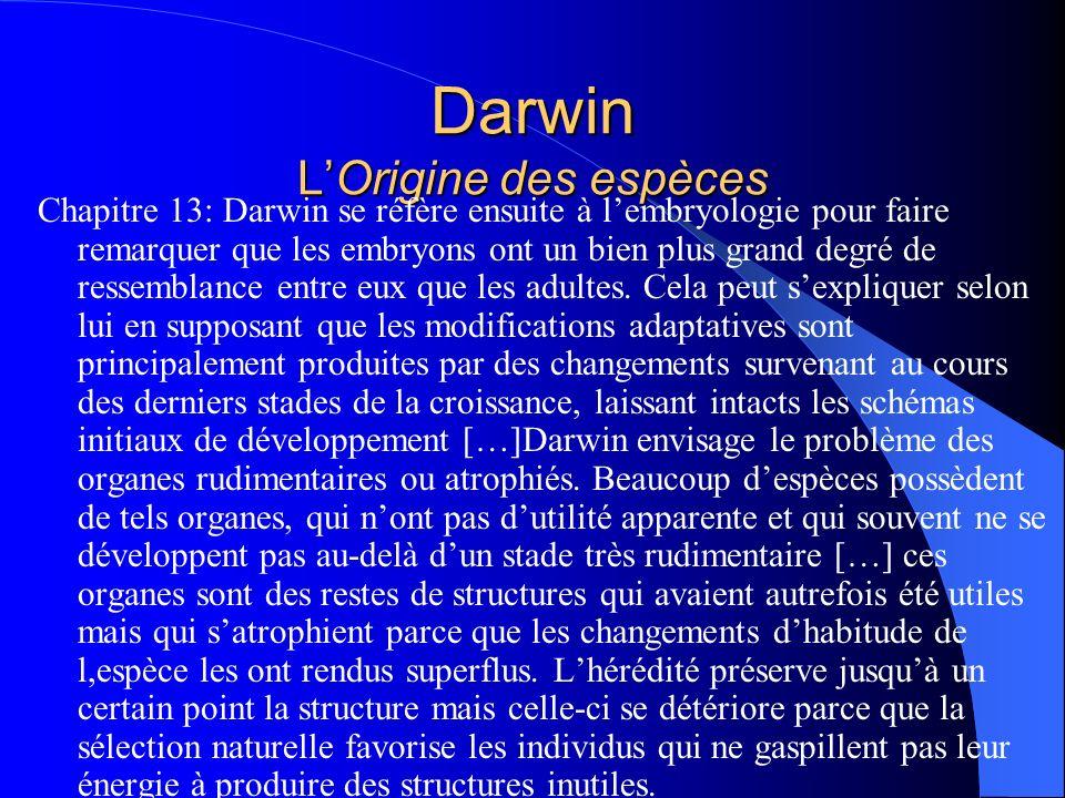 Darwin LOrigine des espèces Chapitre 13: Darwin se réfère ensuite à lembryologie pour faire remarquer que les embryons ont un bien plus grand degré de