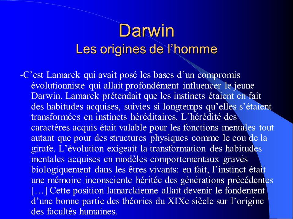 Darwin Les origines de lhomme -Cest Lamarck qui avait posé les bases dun compromis évolutionniste qui allait profondément influencer le jeune Darwin.