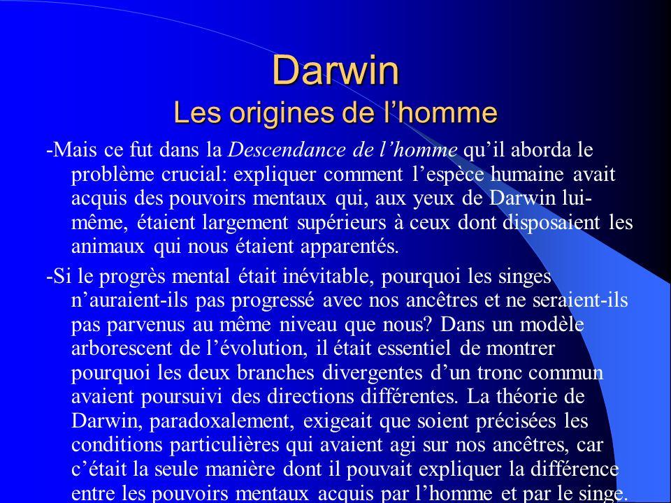 Darwin Les origines de lhomme -Mais ce fut dans la Descendance de lhomme quil aborda le problème crucial: expliquer comment lespèce humaine avait acqu