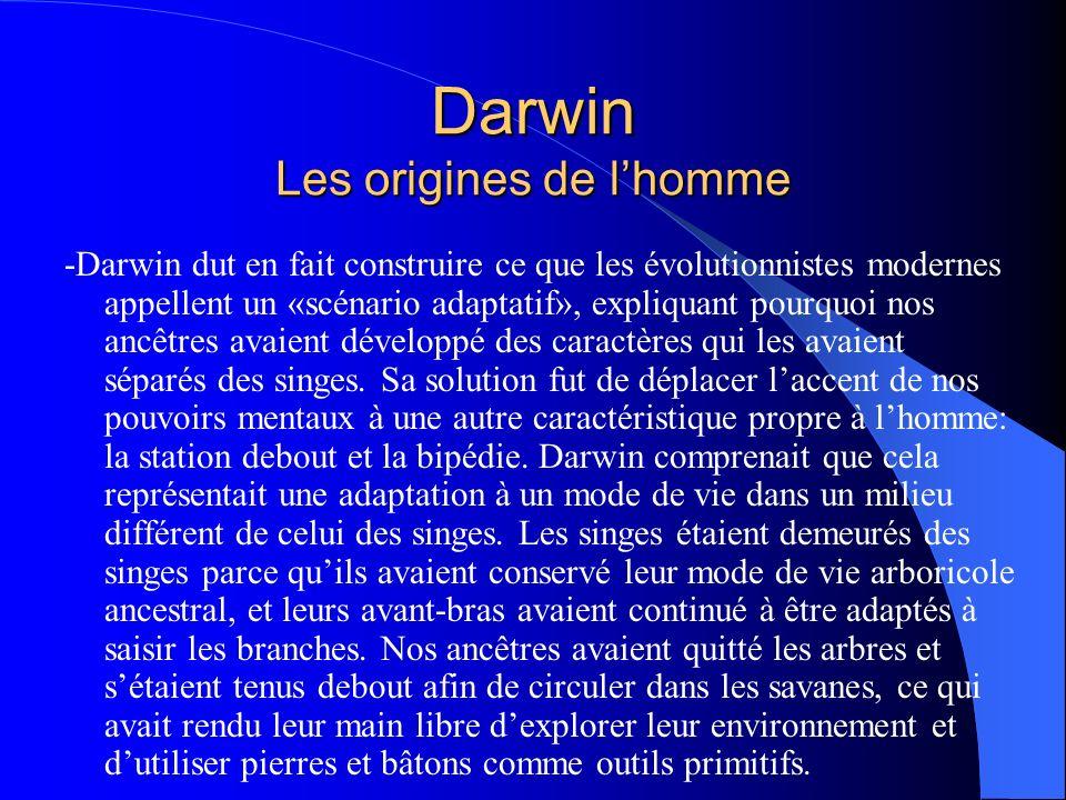 Darwin Les origines de lhomme -Darwin dut en fait construire ce que les évolutionnistes modernes appellent un «scénario adaptatif», expliquant pourquo