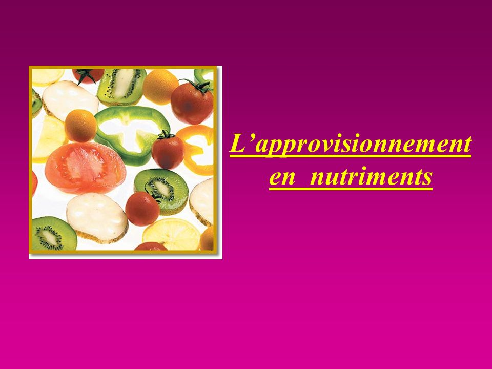 Lapprovisionnement en nutriments