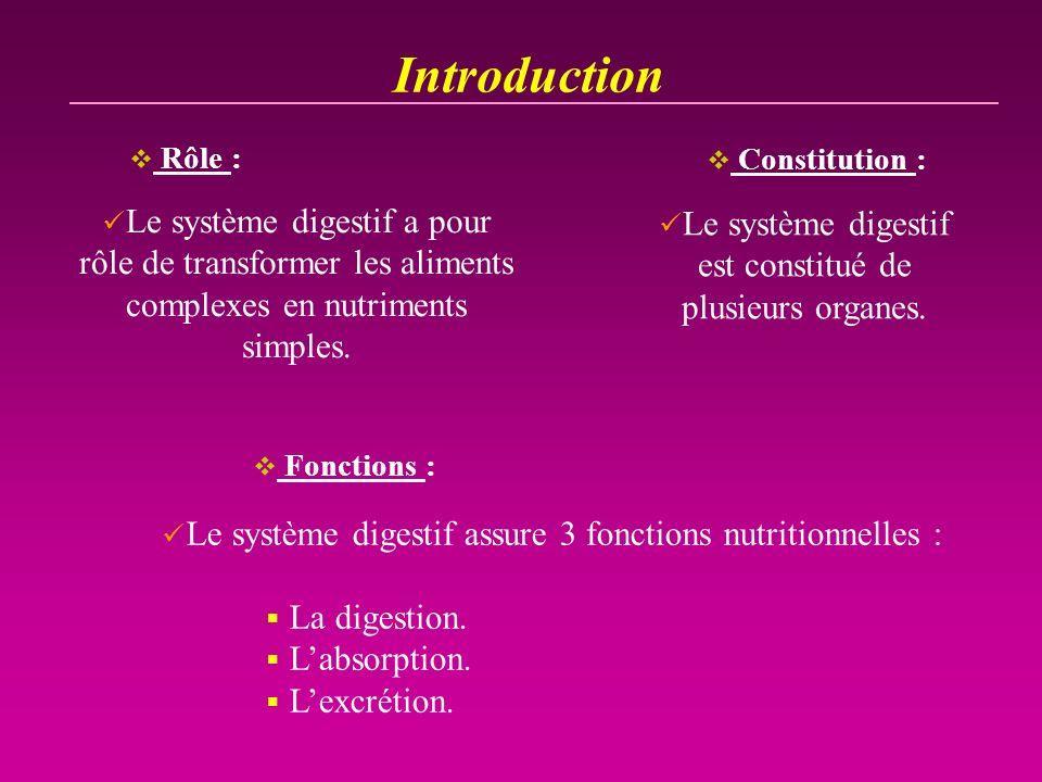 Introduction Le système digestif a pour rôle de transformer les aliments complexes en nutriments simples. Rôle : Constitution : Le système digestif es