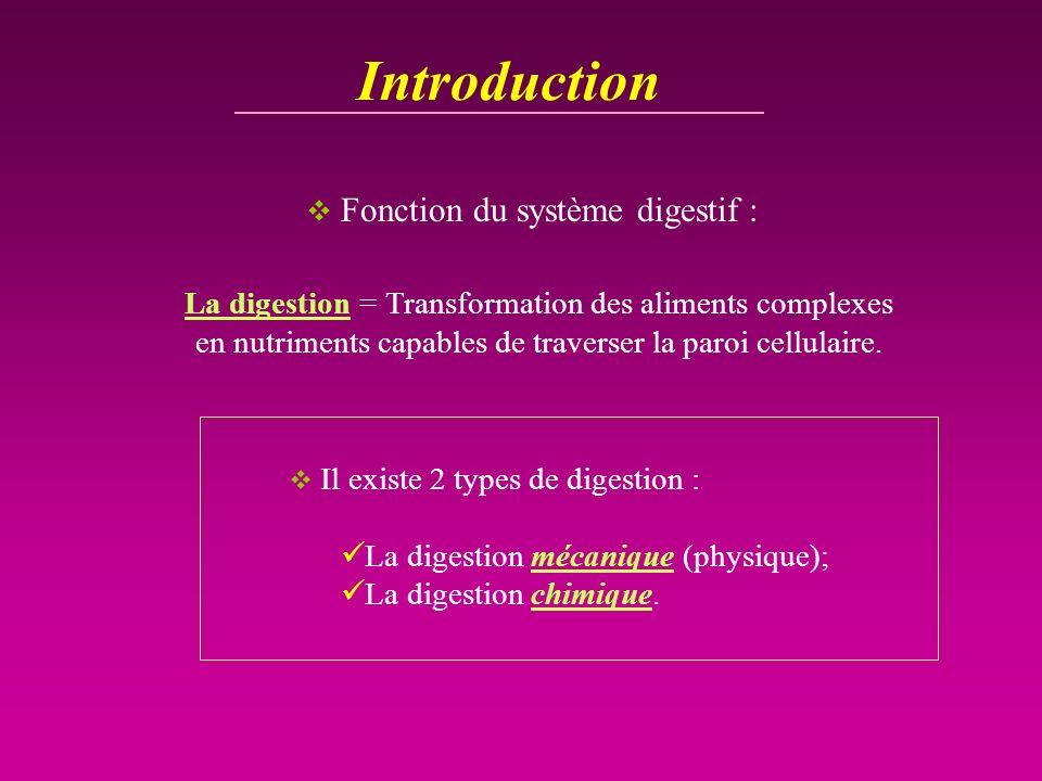 Introduction Fonction du système digestif : La digestion = Transformation des aliments complexes en nutriments capables de traverser la paroi cellulai