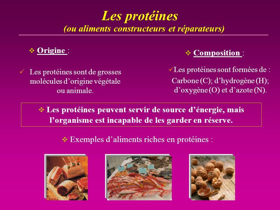 Les protéines Les protéines sont de grosses molécules dorigine végétale ou animale. (ou aliments constructeurs et réparateurs) Les protéines peuvent s