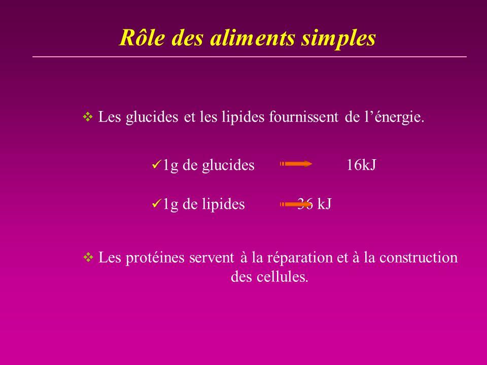 Rôle des aliments simples Les glucides et les lipides fournissent de lénergie. 1g de glucides 16kJ 1g de lipides36 kJ Les protéines servent à la répar