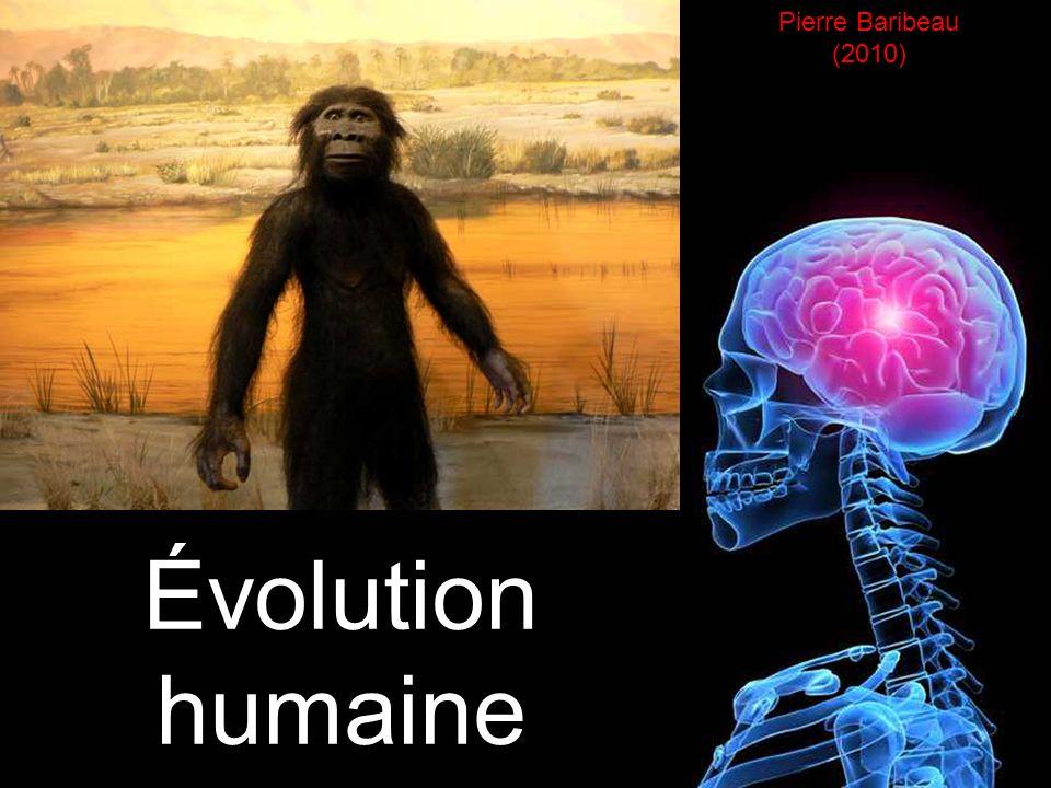 Évolution humaine Pierre Baribeau (2010)