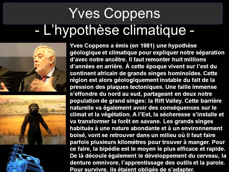 Yves Coppens - Lhypothèse climatique - Yves Coppens a émis (en 1981) une hypothèse géologique et climatique pour expliquer notre séparation davec notr